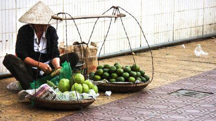 dalat-avocados-1288x724
